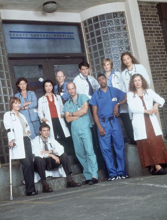 (8. Staffel) - Das Team von der Notaufnahme: (oben v.l.n.r.) Abby (Maura Tierney), Romano (Paul McCrane), Kovac (Goran Visnjic), Dr. Lewis (Sherry S... - Bildquelle: TM+  WARNER BROS.