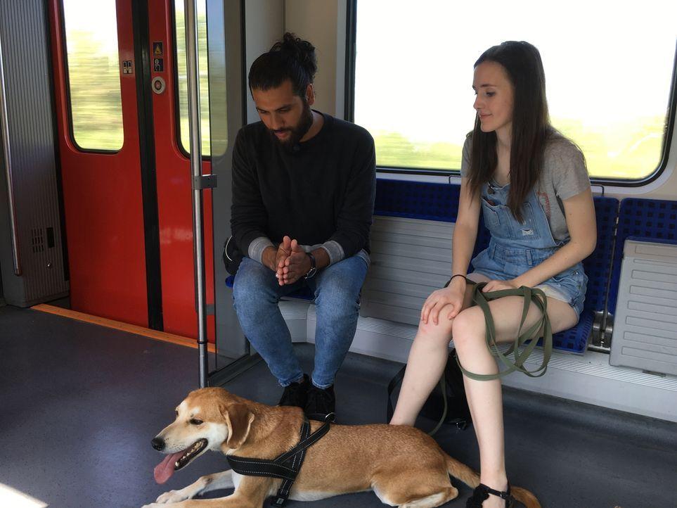 Für die 17-jährige Narkoleptikerin Paulina (r.) wird Masih Samin (l.) in der Türkei fündig. Er möchte den ehemaligen Straßenhund Nikko so trainieren... - Bildquelle: SAT.1