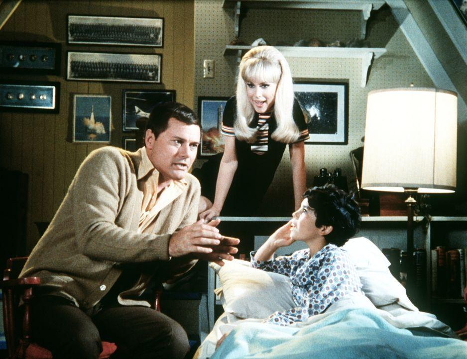 Tony (Larry Hagman, l.) erzählt Melvin (Michael Barbera, r.) die Geschichte von Aladins Wunderlampe, doch Jeannie (Barbara Eden, M.) unterbricht ihn... - Bildquelle: Columbia Pictures