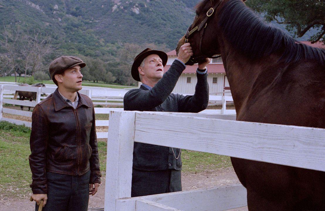 Obwohl Tom Smith (Chris Cooper, r.) weiß, dass Red Pollard (Tobey Maguire, l.) als Jockey bisher keinerlei Erfolge eingefahren hat, verpflichtet er... - Bildquelle: Francois Duhamel 2003 Universal Studiosand DREAMWORKS LLC..All Rights Reserved.