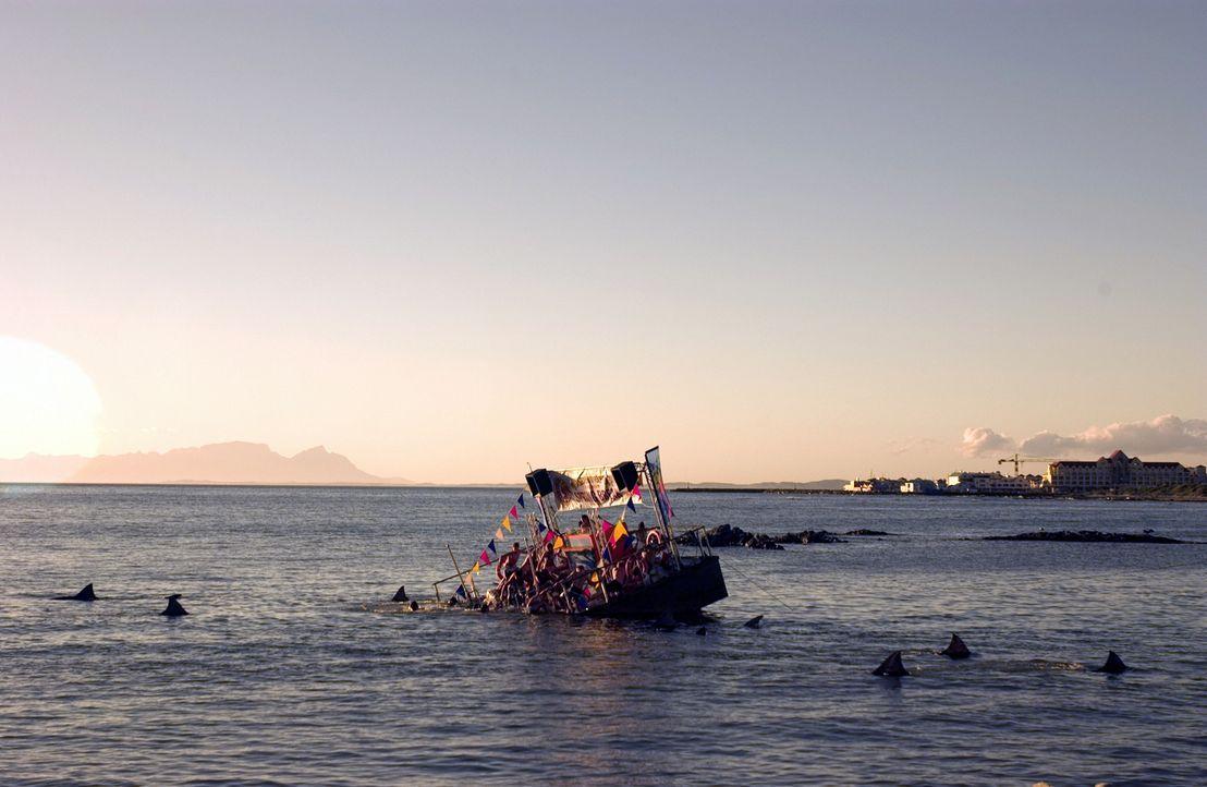 Weil die Behörden die Touristen nicht verlieren wollen, werden die Teilnehmer am legendären Spring Break nicht vor der Hai-Invasion gewarnt ... - Bildquelle: CBS Television