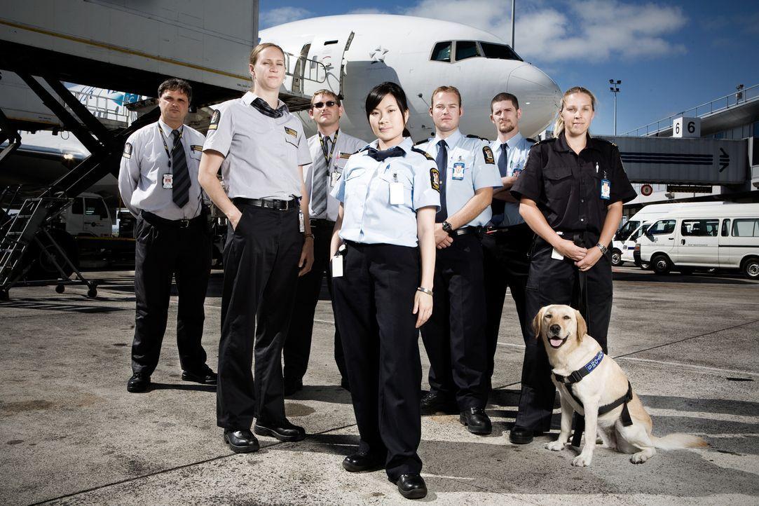 Allein im Jahr 2009 kamen rund vier Millionen Urlauber per Flugzeug oder Schiff nach Neuseeland. Grenzbeamte sollen verhindern, dass Drogen, Pornogr...