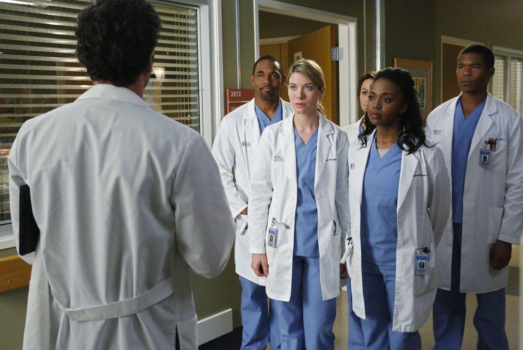 Da sich der Arbeitstag dem Ende nähert, planen Ben (Jason George, 2.v.l.), Leah (Tessa Ferrer, 3.v.l.),  Jo (Camilla Luddington, 3.v.r.), Stephanie... - Bildquelle: ABC Studios