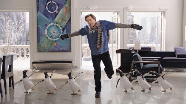 Mr. Poppers Pinguine - Ein Erbe, das es in sich hat: Tom Popper (Jim Carrey)...