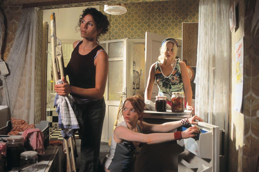 Die drei Freundinnen Inken (Diana Amft, r.), Lucy (Jasmin Gerat, l.) und Lena (Karoline Herfurth, M.) sind gemeinsam auf der Suche der richtigen Woh... - Bildquelle: Constantin