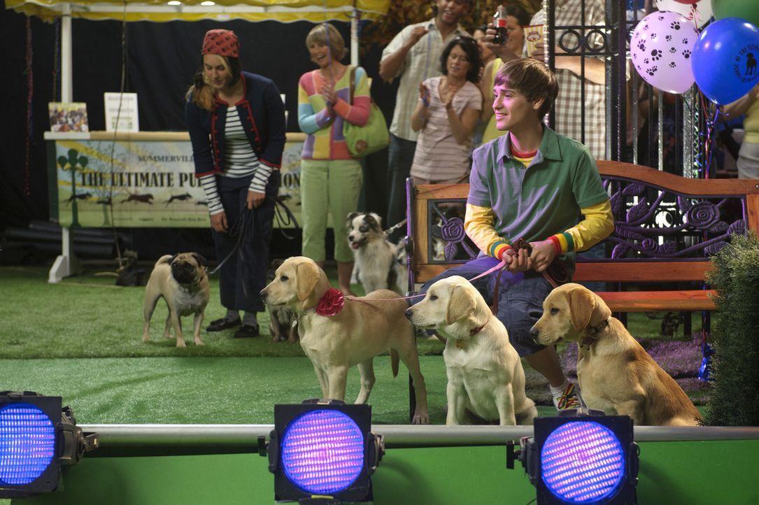 Bodi Grogan (Travis Turner) ist mit seinen drei Labrador-Hunden ein Favorit bei dem Hundewettbewerb unter seinen Nachbarn. Vor allem Marley hast es... - Bildquelle: 2011 Twentieth Century Fox Film Corporation. All rights reserved.