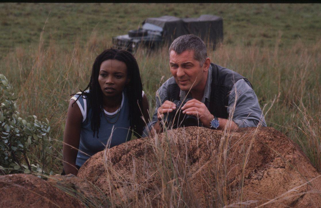 Stan (Heinz Hoenig, r.) und Malindi (Nambitha Mpumlwana, l.) beobachten Großwildjäger, die Elfenbein abtransportieren. - Bildquelle: Axel Fremmer Sat.1