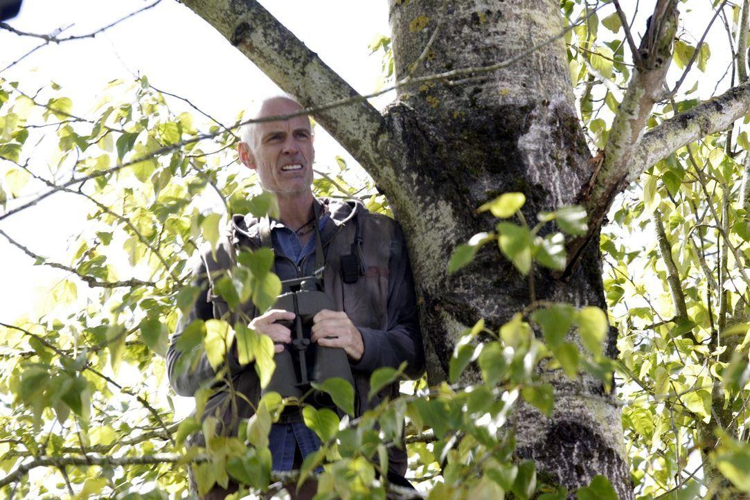 Taggert (Matt Frewer) leidet ebenso wie Spencer, Fargo, Vincent und Jo Lupo an Wahnvorstellungen ... - Bildquelle: Universal Television