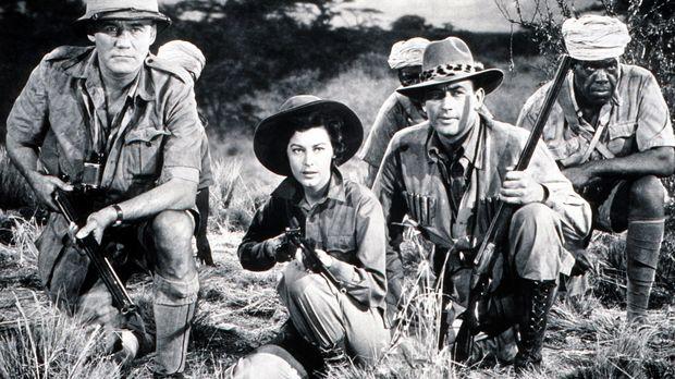 Begeben sich auf eine Safari in Afrika unter den wachsamen Augen von Johnson...