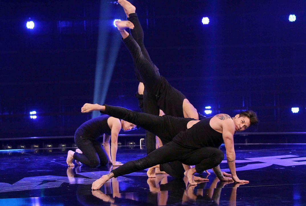 Got-To-Dance-Contrast-07-SAT1-ProSieben-Guido-Engels - Bildquelle: SAT.1/ProSieben/Guido Engels