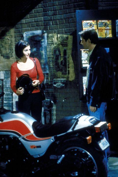 Chip Matthews ist der begehrteste Junge an der Highschool, und Monica (Courteney Cox, l.) setzt alles daran, ihren Traum von einem Date mit Chip wah... - Bildquelle: TM+  2000 WARNER BROS.