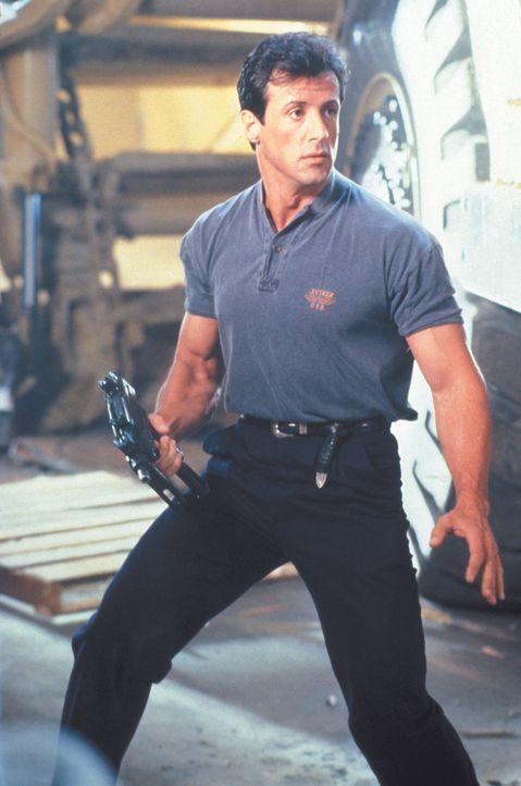 Als er des Mordes angeklagt und verurteilt wird und seine Schwester entführt wird, zieht der Cop Raymond Tango (Sylvester Stallone) die Verantwortli... - Bildquelle: Warner Brothers