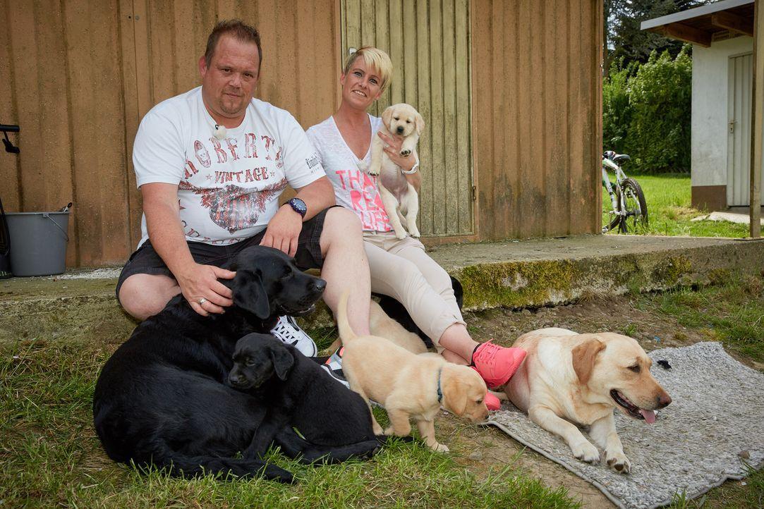Wird sich Familie Kolodziej für einen Labrador Retriever Welpen aus der Zucht von Nadja Müller (r.) entscheiden? - Bildquelle: Guido Engels SAT.1