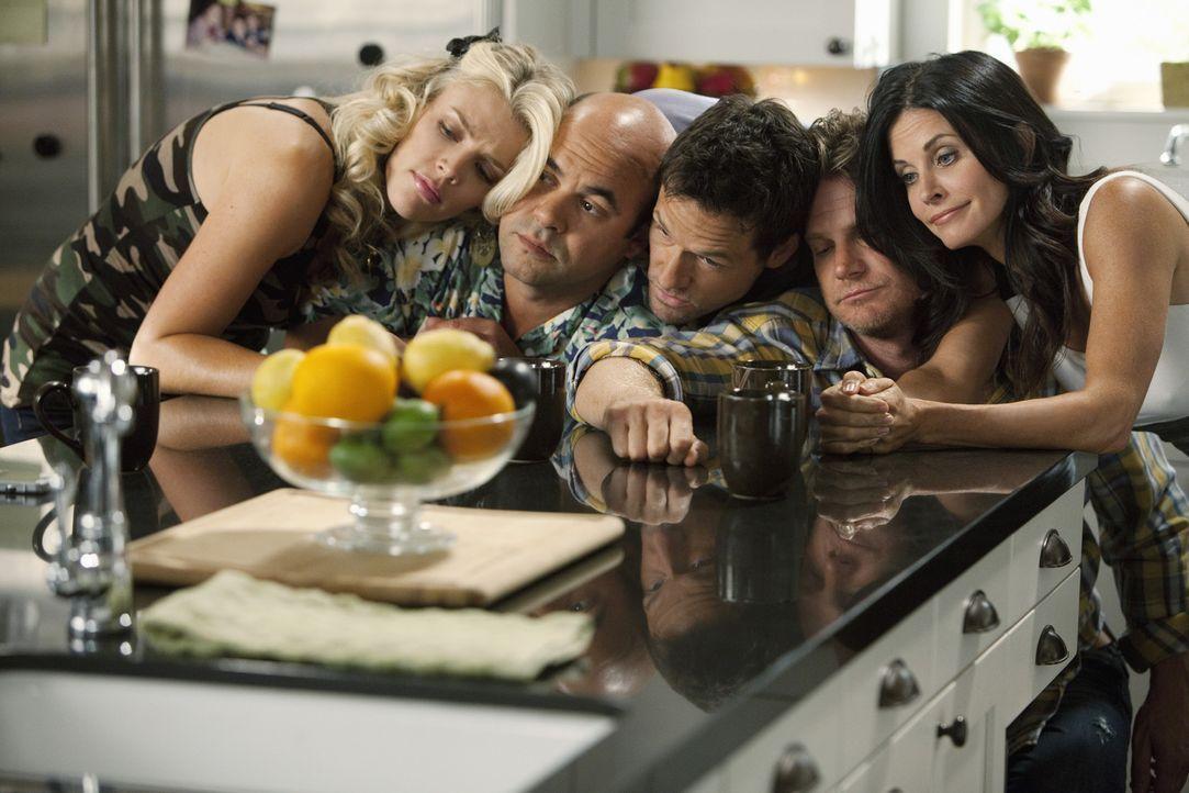 Was ist nur mit Laurie (Busy Philipps, l.), Andy (Ian Gomez, 2.v.l.), Grayson (Josh Hopkins, M.), Bobby (Brian Van Holt, 2.v.r.) und Jules (Courtene... - Bildquelle: 2010 ABC INC.
