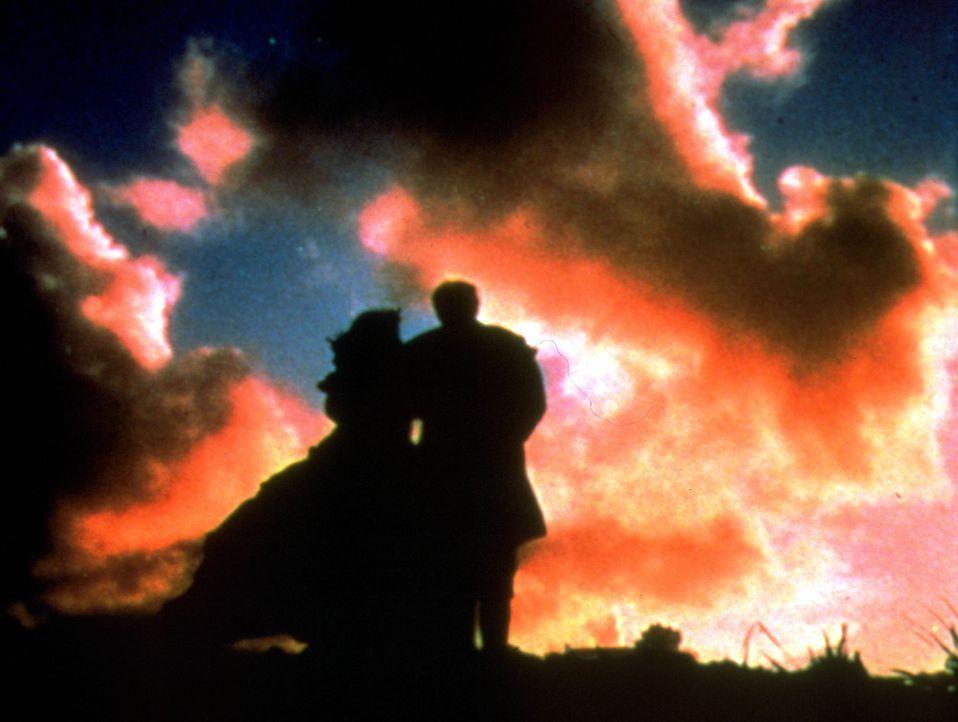 Alle Hoffnungen und Wünsche sind vom Winde verweht ... - Bildquelle: Metro-Goldwyn-Mayer (MGM)