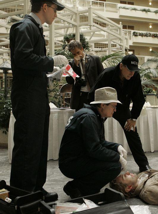 Jimmy Palmer (Brian Dietzen, l.), Gibbs (Mark Harmon, r.), Tony (Michael Weatherly, 2.v.l.) und Ducky (David McCallum, 2.v.r.) werden hinzugerufen,... - Bildquelle: CBS Television