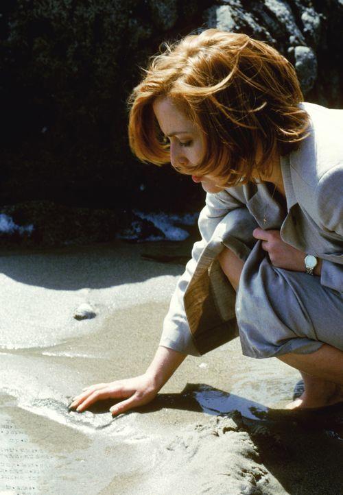 Scully (Gillian Anderson) ist davon überzeugt, dass die Artefakte Fälschungen sind. Doch wird sie damit Recht behalten? - Bildquelle: 1998-1999 Twentieth Century Fox Film Corporation.  All rights reserved.