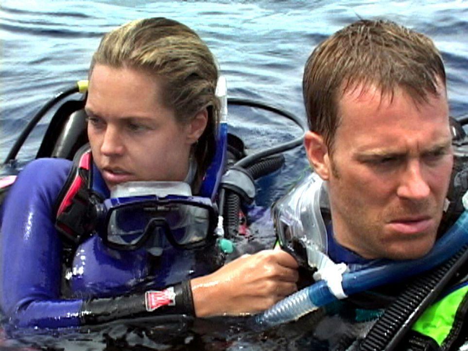 Anfangs glauben Susan (Blanchard Ryan, l.) und Daniel (Daniel Travis, r.) noch an ein Missverständnis, doch allmählich wird ihnen klar, dass sie t... - Bildquelle: 2004 Lions Gate Films. All Rights Reserved.