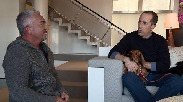 Cesar (l.) bekommt einen Notruf von dem bekannten Comedian Jerry Seinfeld (r....