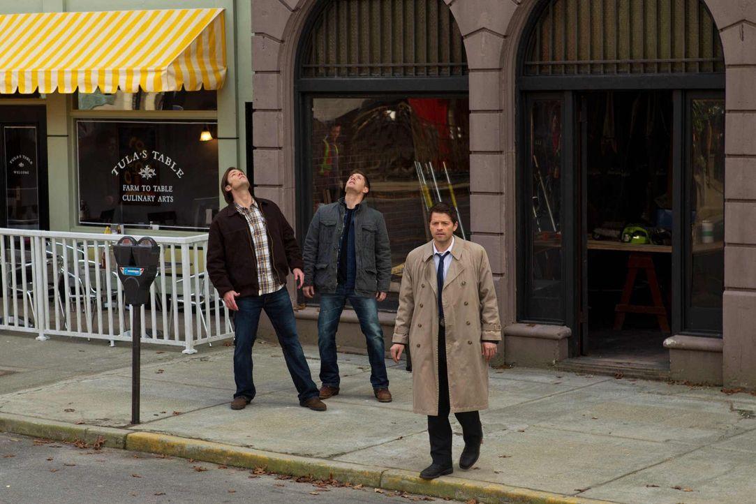 Die Neuigkeiten, die Castiel (Misha Collins, r.) für Sam (Jared Padalecki, l.) und Dean (Jensen Ackles, M.) hat, zeigen ihnen die Hartnäckigkeit des... - Bildquelle: Warner Bros. Television