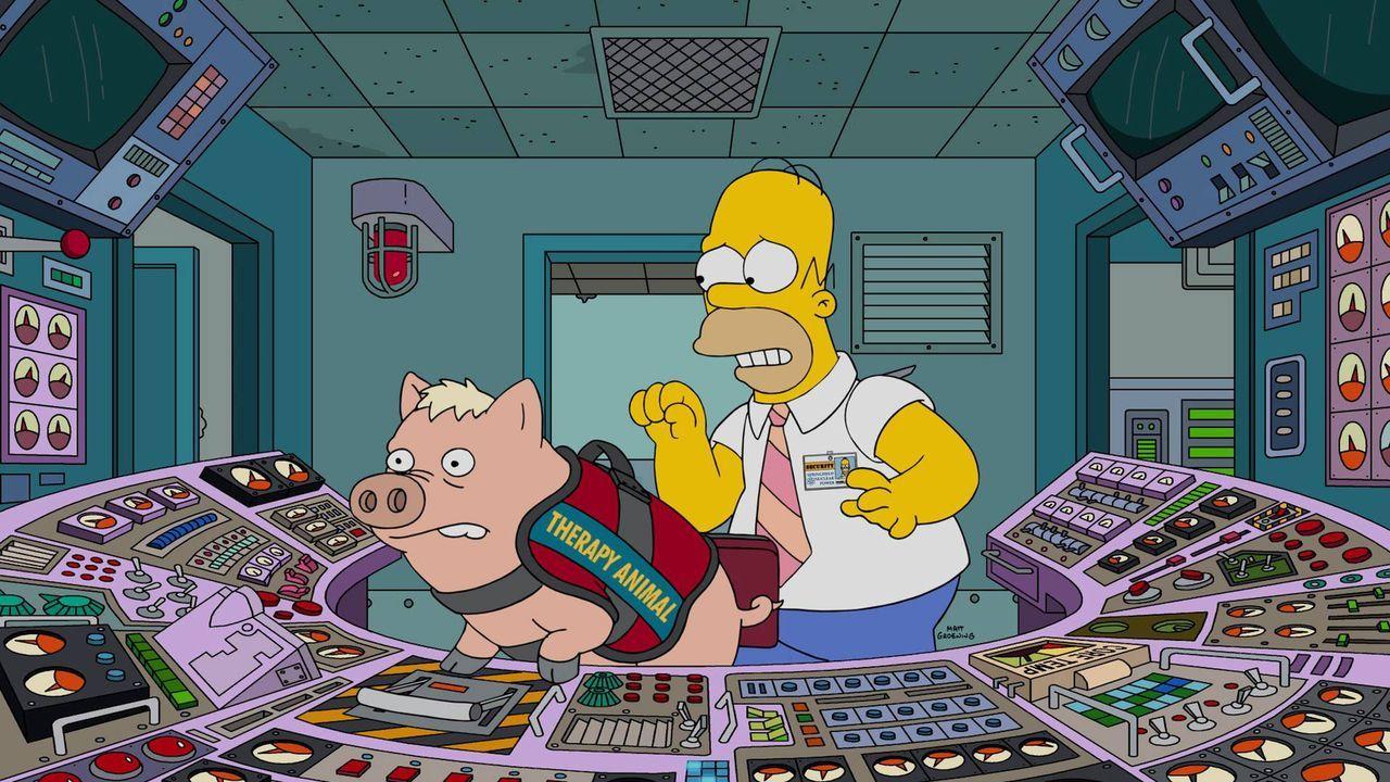 Homer (r.) wird von Marge gezwungen, ein neues Zuhause für das Familienschwein zu finden, dabei sind die beiden doch ein unschlagbares Team ... - Bildquelle: 2016-2017 Fox and its related entities. All rights reserved.