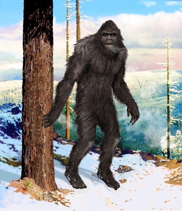Immer wieder behaupten Menschen auf der ganzen Welt, Bigfoots Fußabdrücke gesehen zu haben. Auch alte Legenden erzählen von einer affenähnlichen Ges... - Bildquelle: A&E Television Networks/Prometheus Entertainment