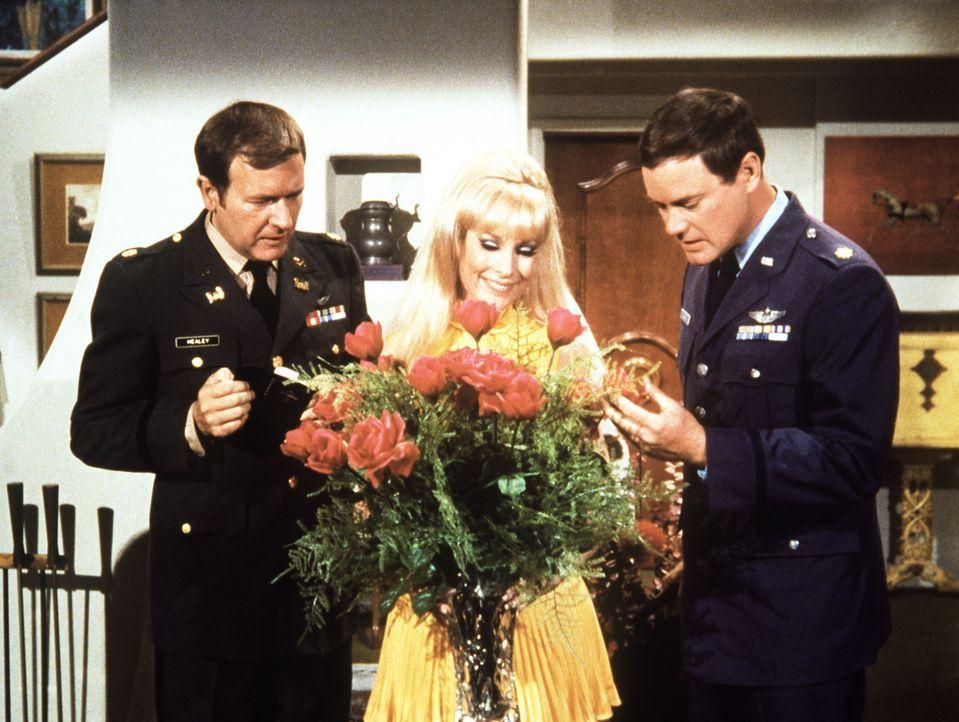 Jeannie (Barbara Eden, M.) freut sich über den Blumenstrauß, doch Roger (Bill Daily, l.) und Tony (Larry Hagman, r.) wissen, dass der Strauß nicht v... - Bildquelle: Columbia Pictures