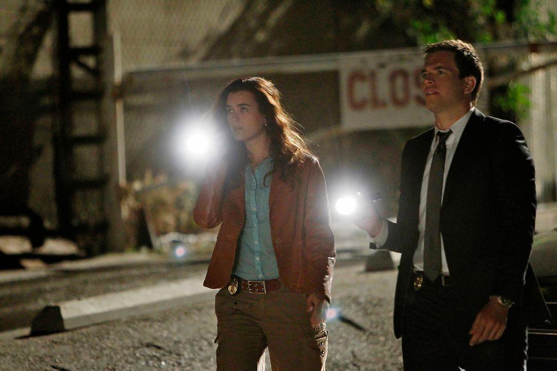 Ermitteln in einem neuen Mordfall: Ziva (Cote de Pablo, l.) und DiNozzo (Michael Weatherly, r.) ... - Bildquelle: CBS Television