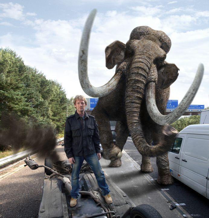 Cutter (Douglas Henshall) und seine Team versuchen, ein Mammut wieder in die Vergangenheit zu befördern, damit die jetzige Welt nicht zerstört wir... - Bildquelle: ITV Plc
