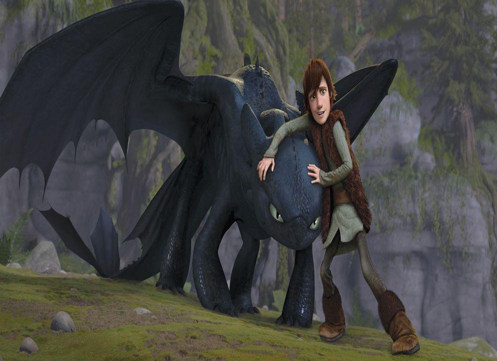Selbstlos verteidigt der sonst so feige Wikingerhäuptlingssohn Hicks den Drachen Ohnezahn vor Angriffen durch seine Landsleute: Die haben nämlich... - Bildquelle: 2012 by DreamWorks Animation LLC. All rights reserved.