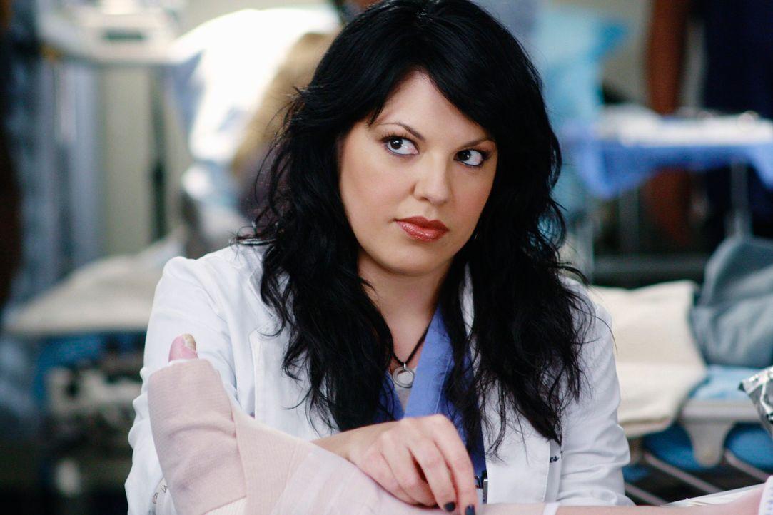 Hofft auf ein Date mit Arizona: Callie (Sara Ramirez) ... - Bildquelle: Touchstone Television