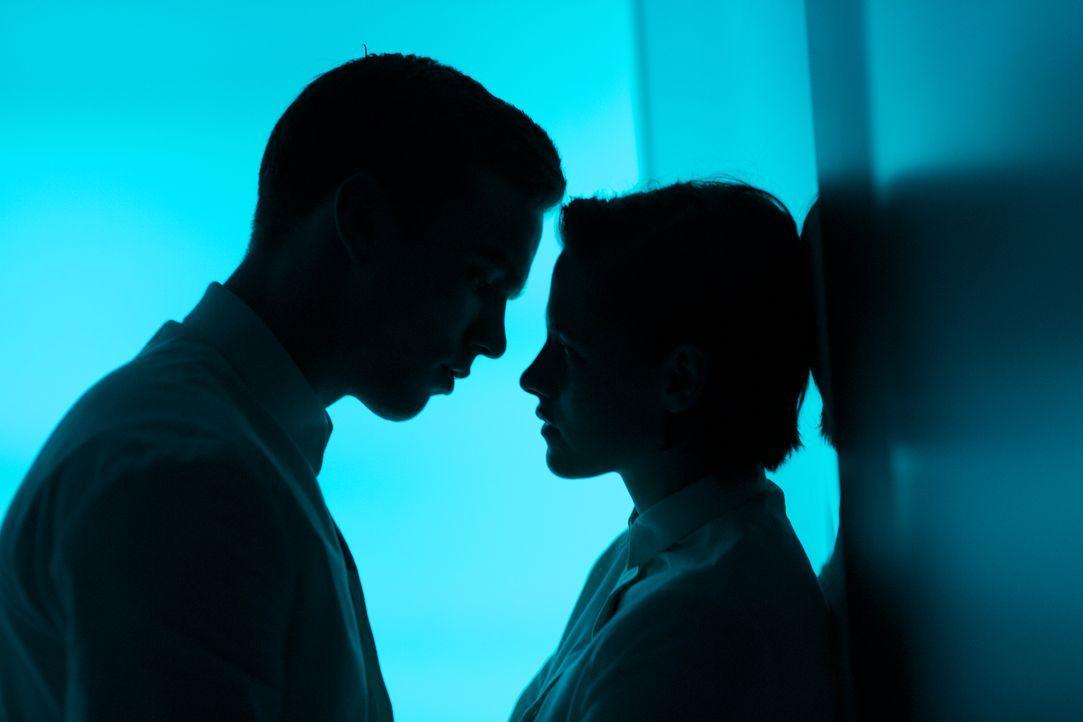 Wollen nicht mehr in emotionaler Leere leben: Silas (Nicholas Hoult, l.) und Nia (Kristen Stewart, r.) ... - Bildquelle: Koch Media GmbH
