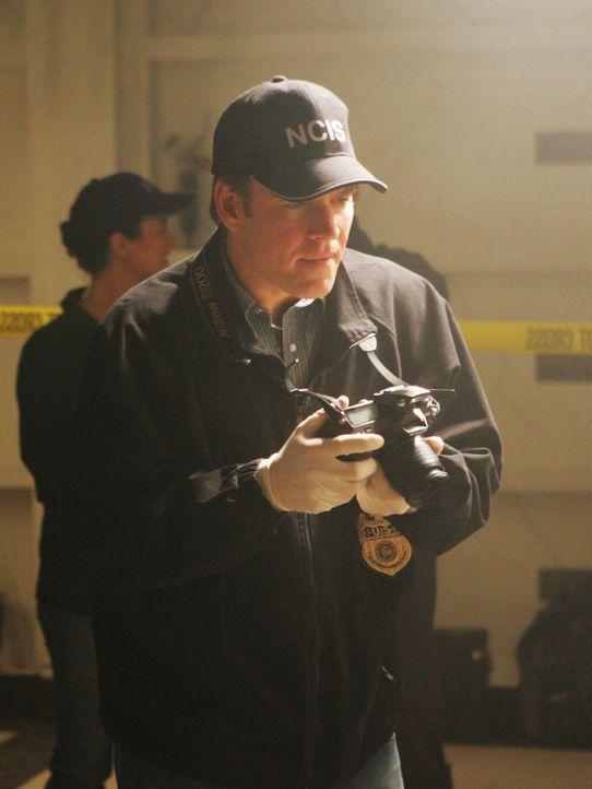 Nach einer Explosion in einer Gruft findet man Überreste mehrerer Leichen, die dort ursprünglich nicht begraben wurden. Tony (Michael Weatherly) ist... - Bildquelle: CBS Television