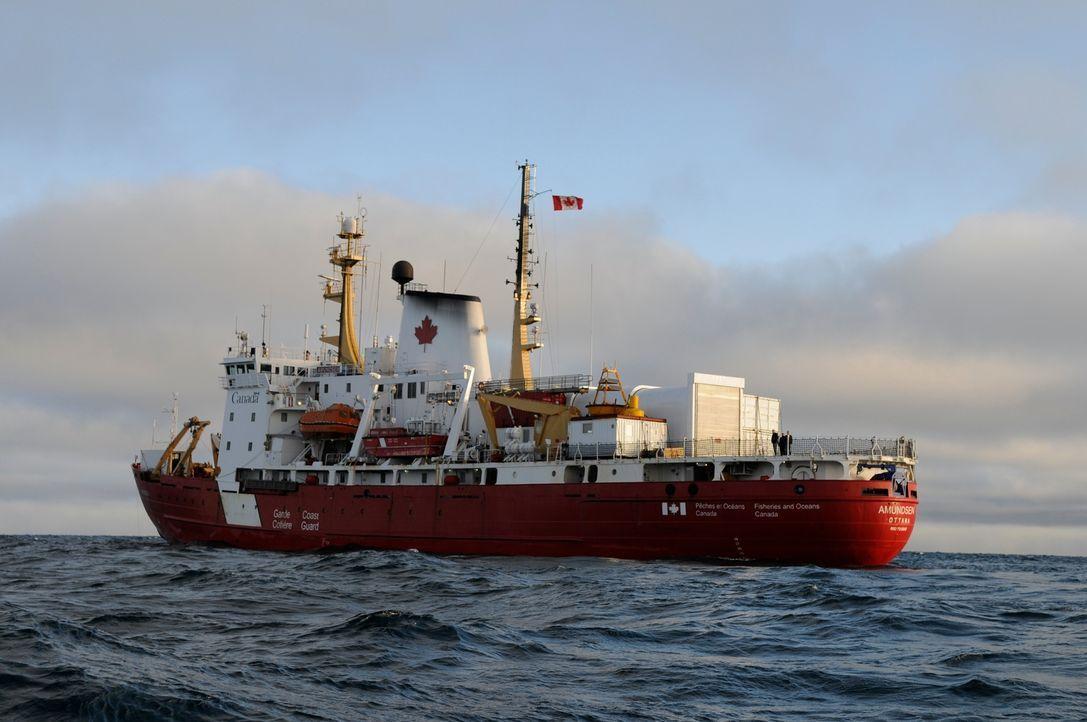 Das Canadian Coast Guard-Schiff Amundsen ist einer der seltenen Forschungseisbrecher, deren Aufgabe es ist, die Antarktis zu verstehen und gegen die... - Bildquelle: Exploration Production Inc.
