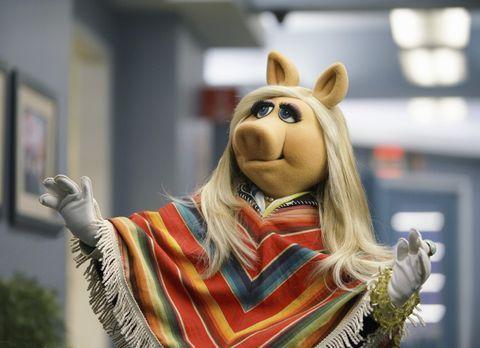 The Muppets - Hat neue Erkenntnisse im Urlaub getroffen: Miss Piggy ... - Bil...