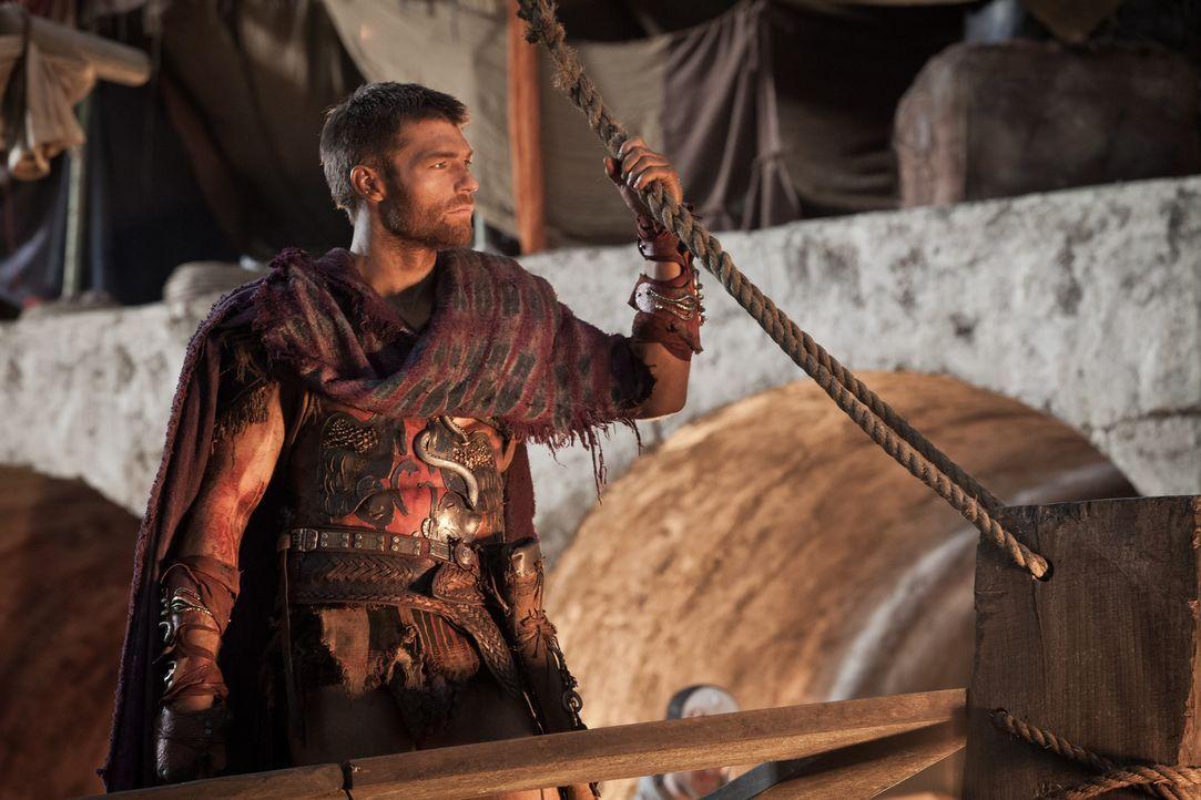 Will Crassus von zwei Seiten angreifen, und will deshalb mit einem Großteil seiner Leute nach Sizilien: Doch dann wird Spartacus (Liam McIntyre) ver... - Bildquelle: 2012 Starz Entertainment, LLC. All rights reserved.