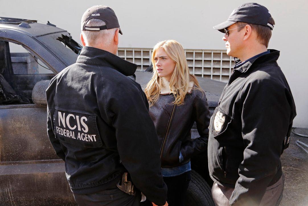 Während McGee mit den Folgen eines fatalen Vorfalls zu kämpfen hat, versuchen Gibbs (Mark Harmon, l.), Tony (Michael Weatherly, r.) und Ellie (Emily... - Bildquelle: CBS Television