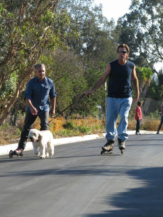 Dank Cesar Millan (l.) kann Vince Van Patten (r.) zukünftig sogar zum Rollerbladen gehen und den Terrierwelpe Charlotte mitnehmen ... - Bildquelle: Rive Gauche Intern. Television