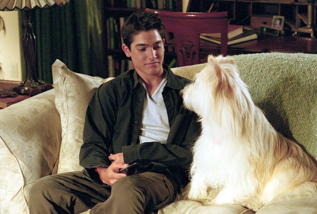 Martin (Tyler Hoechlin, l.), der neue Mitbewohner der Camdens, versteht sich auf Anhieb mit Happy dem Hund. - Bildquelle: Paul McCallum The WB Television Network