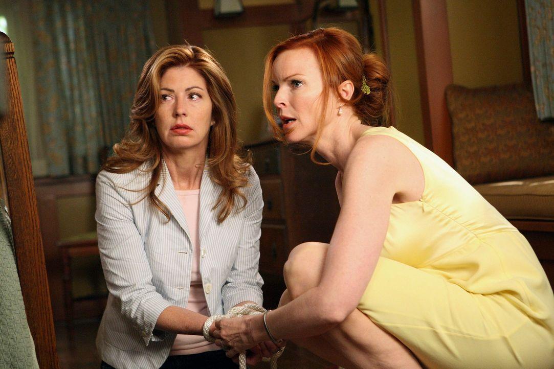 Fürchten um ihr Leben: Katherine (Dana Delany, l.) und Bree (Marcia Cross, r.) ... - Bildquelle: ABC Studios