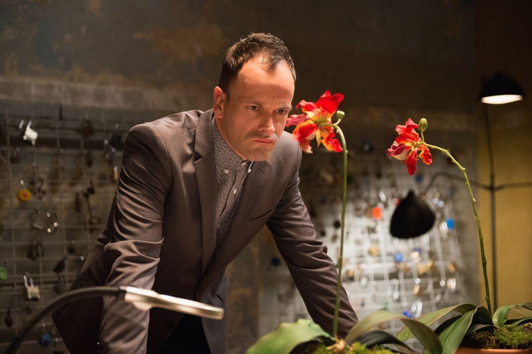 Holmes (Jonny Lee Miller) gibt nicht auf, bis der Mord an dem Bioingeneur aufgeklärt ist ... - Bildquelle: CBS Television