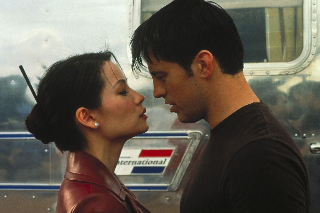 Alex (Lucy Liu, r.) lässt nur einen ran: Jason (Matt LeBlanc, r.) ... - Bildquelle: Columbia Pictures