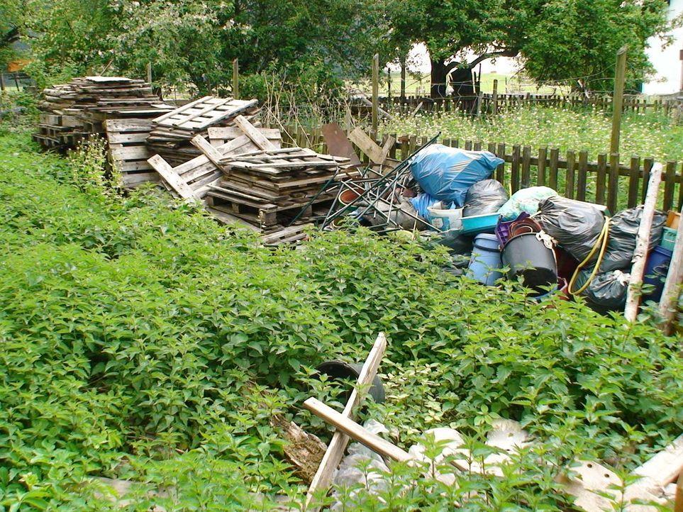 Müll - wohin das Auge schaut ... - Bildquelle: Sat.1