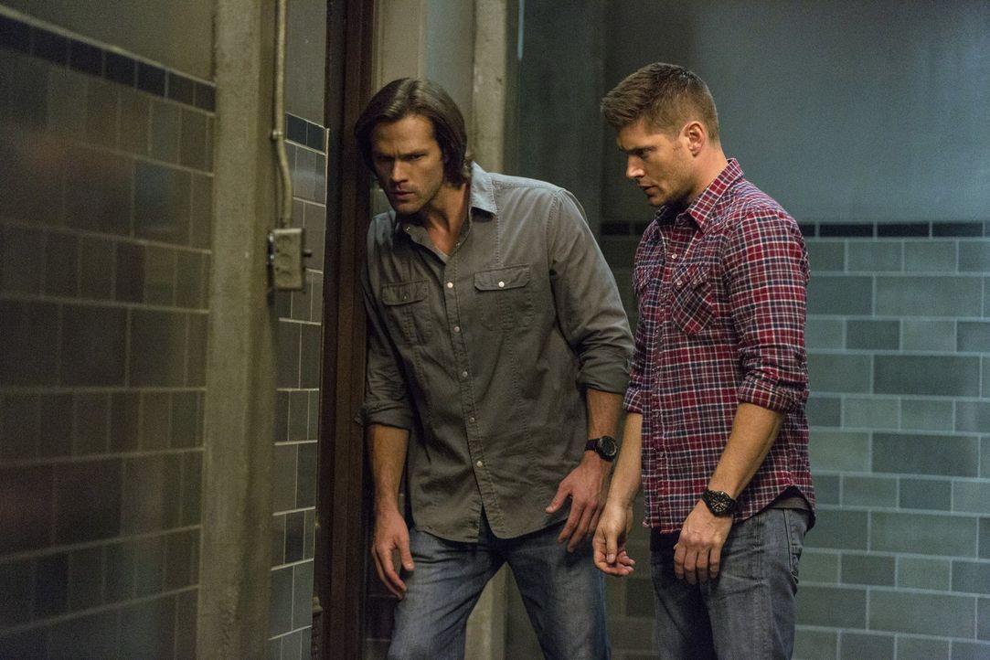 Sam (Jared Padalecki, l.) und Dean (Jensen Ackles, r.) müssen sich schließlich nicht nur mit der Bedrohung durch Amara auseinandersetzen, sondern si... - Bildquelle: 2014 Warner Brothers