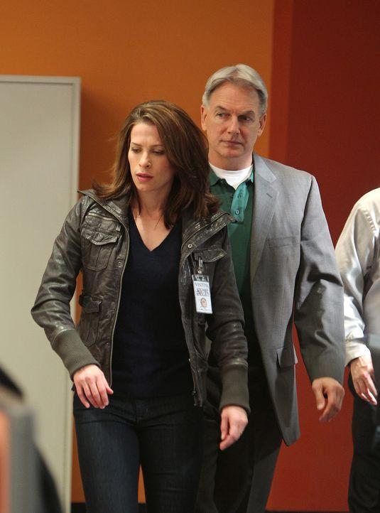 Gibbe (Mark Harmon, r.) ermittelt im Mordfall von Travis Wooten. Um etwas herauszufinden befragt er, dessen Frau Marine Gunnery Sergeant Georgia Woo... - Bildquelle: CBS Television