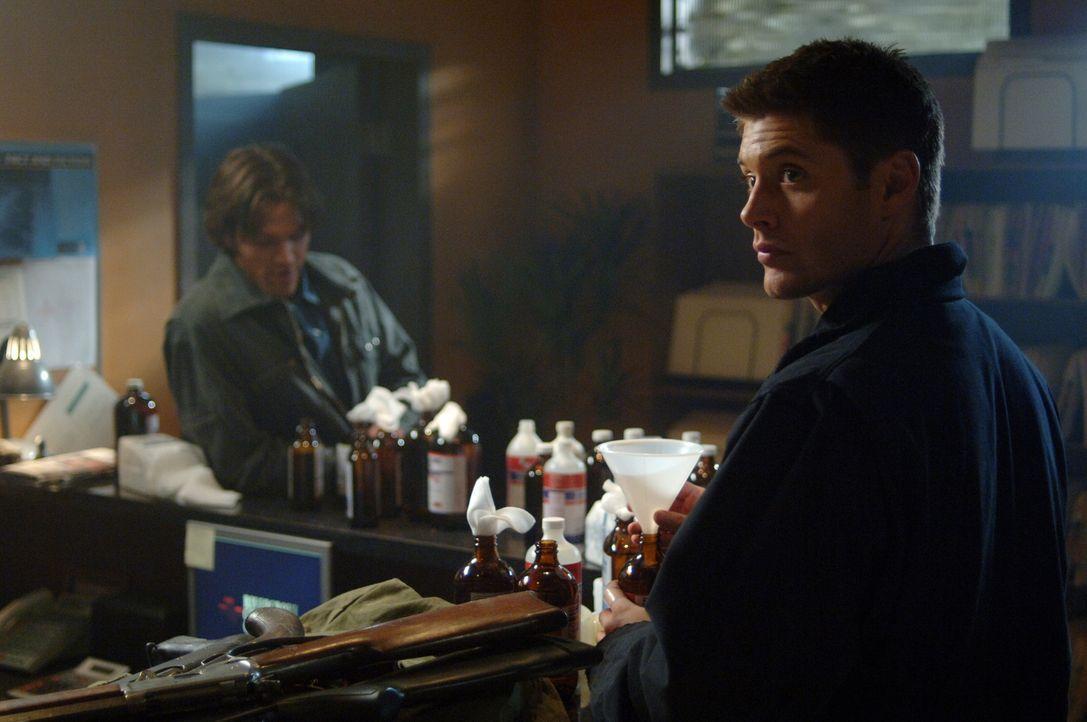Sam (Jared Padalecki, hinten) und Dean (Jensen Ackles, vorne) finden heraus, dass ein Virus die Bewohner gewalttätig werden lässt ... - Bildquelle: Warner Bros. Television