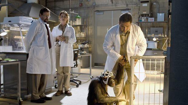 In einem Labor in Nevada experimentiert Dr. Bruce Nesic (Judd Nelson, r.) im...