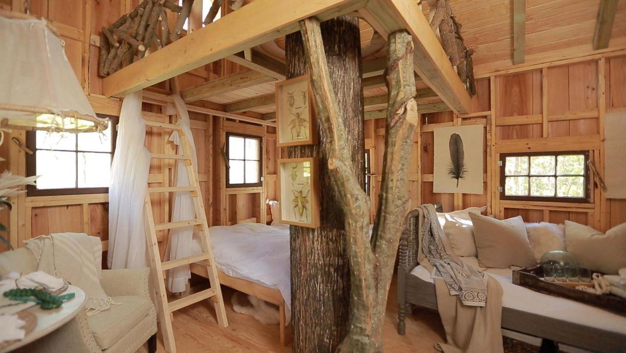 Wird es den Baumhaus-Helden gelingen, ihre Kunden in Windsor glücklich zu machen?