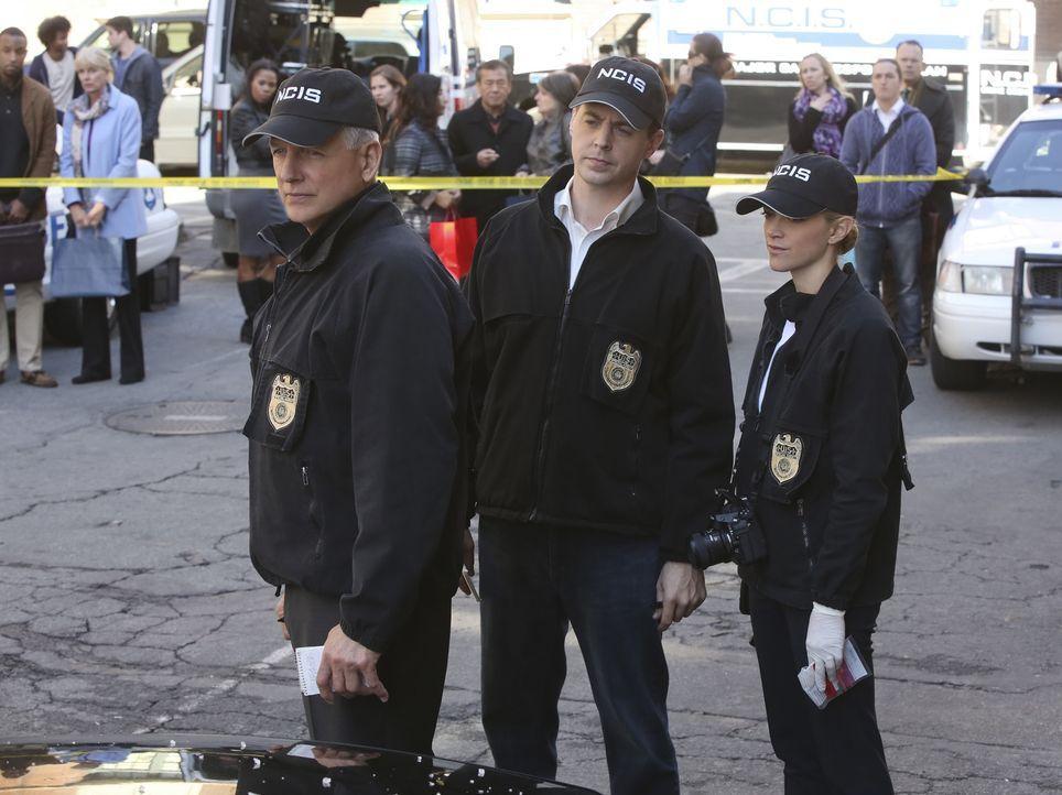 Ein neuer Fall beschäftigt Bishop (Emily Wickersham, r.), Gibbs (Mark Harmon, l.) und McGee (Sean Murray, M.) ... - Bildquelle: Darren Michaels CBS Television
