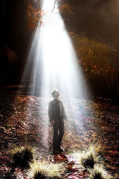 Ray Ferrier (Tom Cruise) traut seinen Augen nicht: Ein regelrechtes Blitzgewitter saust auf die Erde nieder und schlägt riesige Krater in den Aspha... - Bildquelle: 2004 Paramount Pictures All Rights Reserved.
